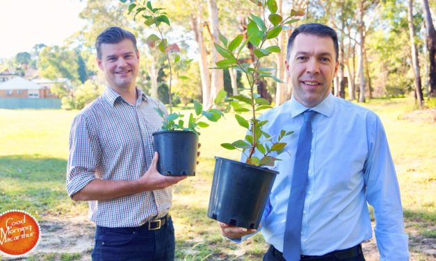 Plant A Tree for Wild Koala Day