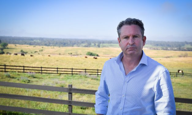 Spring Farm Link Road proposal leaves residents in limbo