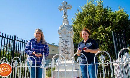 90 Poppy Rocks for Oaks Memorials