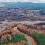 $280 million grants for bushfire recovery